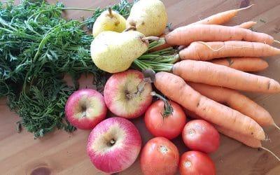 Apportez des micronutriments par les jus de légumes et de fruits frais